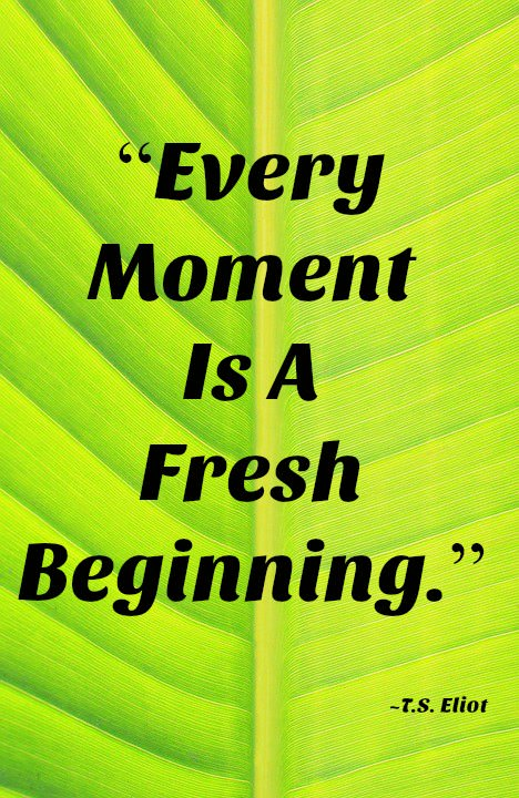 "[IMAGE] ""A Fresh Beginning"" (199)"
