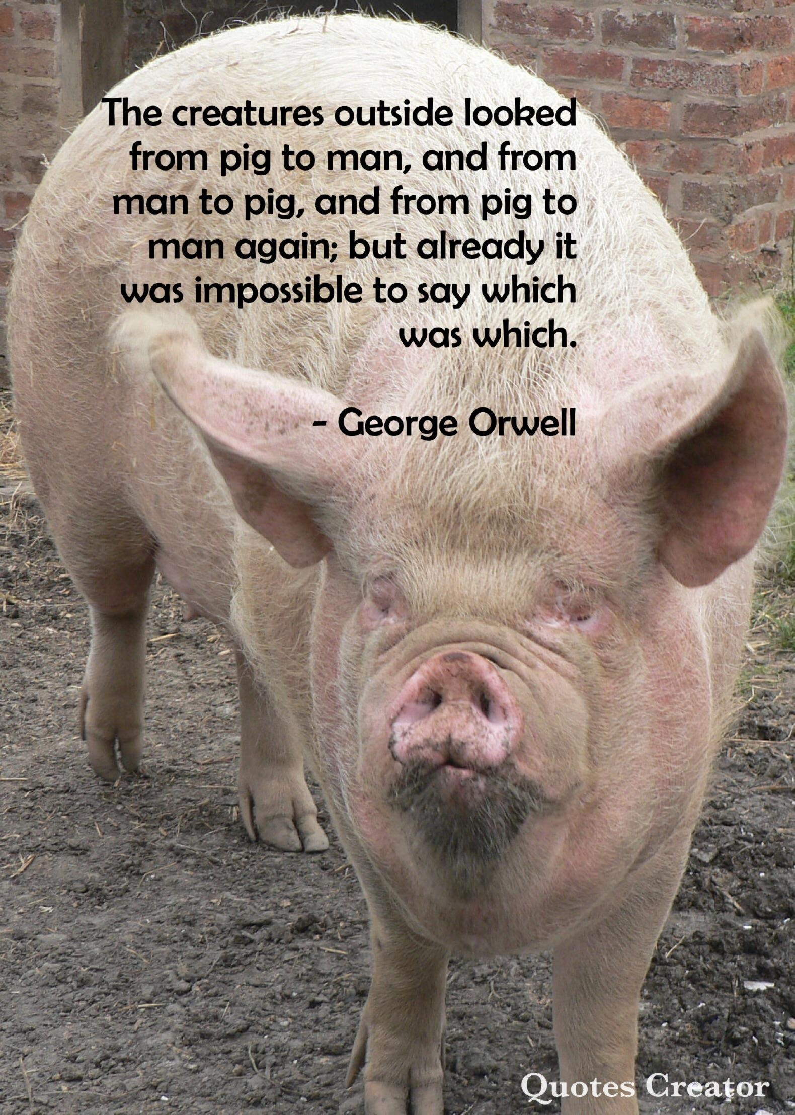 The creatures outside looked from pig to man, and from man to pig, and from pig to man again; but already it was impossible to say which was which. – George Orwell [1245×1750]