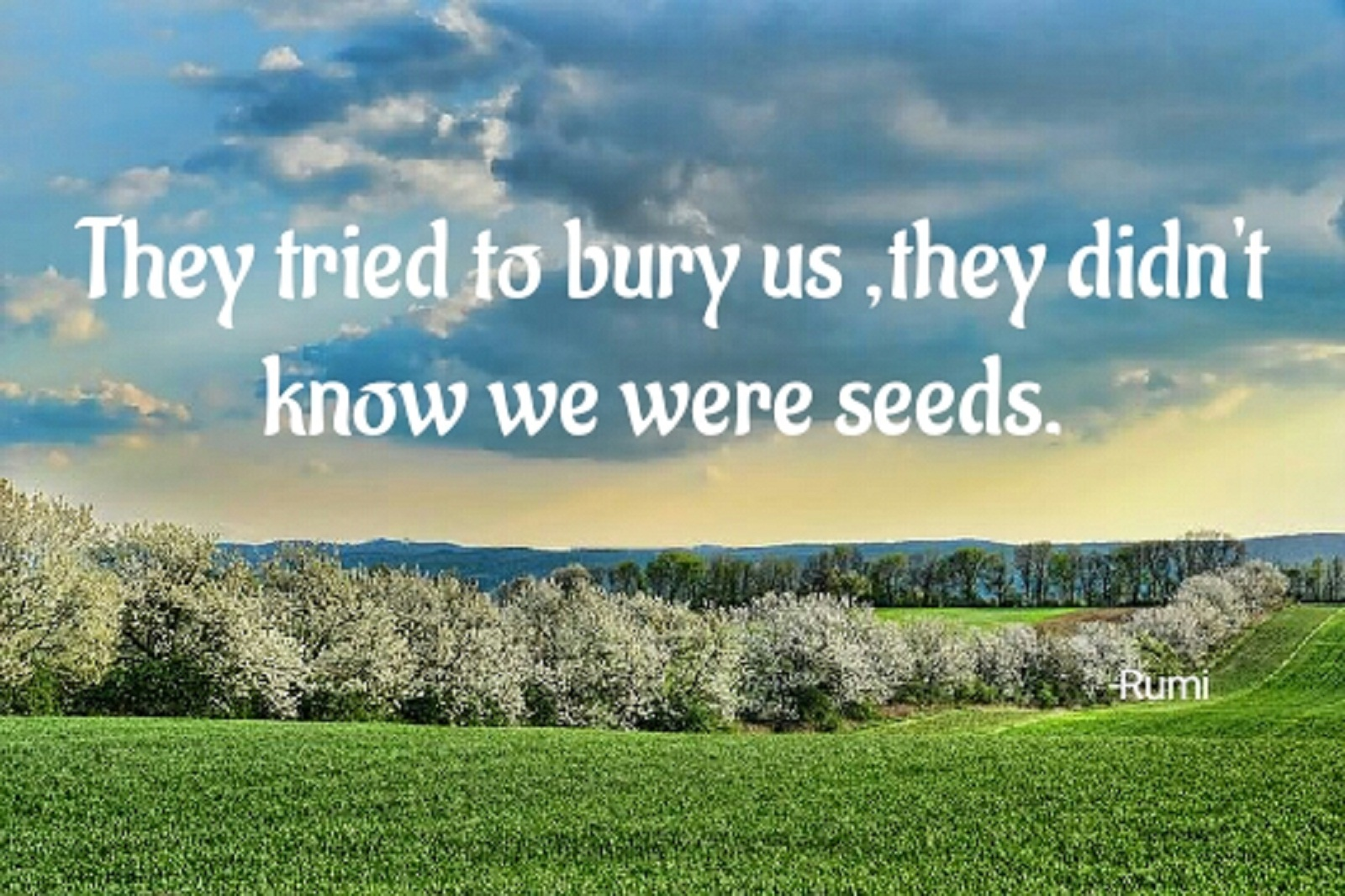 "They tried to bury us, they didn't know we were seeds -Mexican Proverb. [Source-""Quotes Butterfly app "",Google Play ] [1600×1066]."