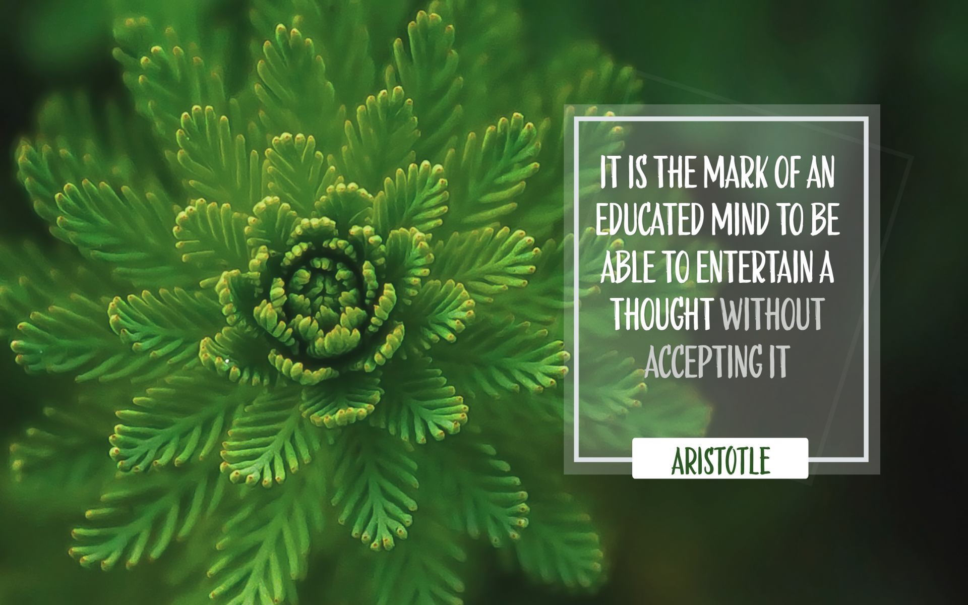 """It is the mark of an educated mind to be able to entertain a thought without accepting it"" Aristotle! [1920×1200]"