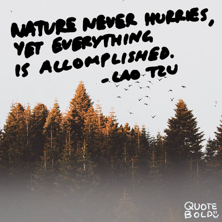 """Nature never hurries, yet everything is accomplished"" – Lao Tzu [800×800] [OC]"
