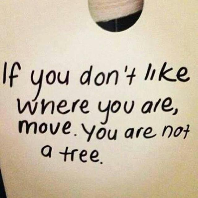 If you don't like where you are, MOVE. You are not a TREE. – Anon (640 x 640)