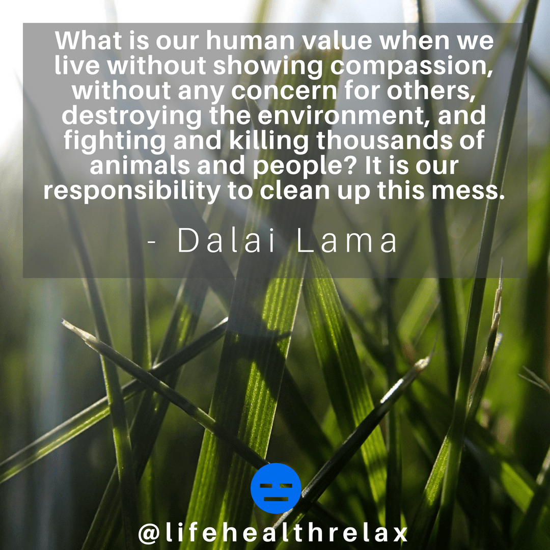 [Image] What is our human value when we live without showing compassion, without any concern for others, destroying the environment, and fighting and killing thousands of animals and people? It is our responsibility to clean up this mess. – Dalai Lama