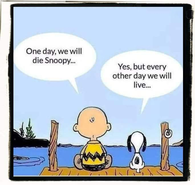 [Image] Live your life to the fullest