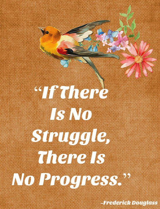 "[IMAGE] ""If There Is No Struggle…"" (234)"