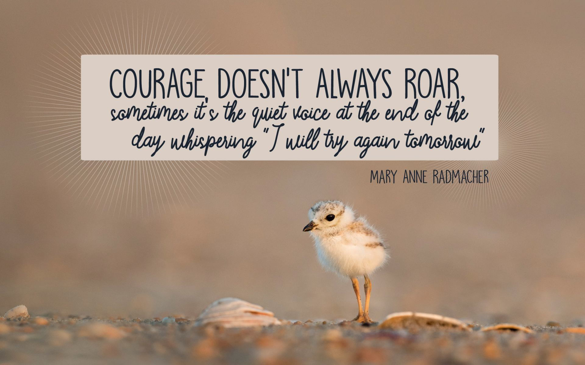 """Courage, Doesn't Always Roar, sometimes it's the quiet voice at the end of the day whispering ""I will try again tomorrow."" "" Mary Anne Radmacher! [1920×1200]"