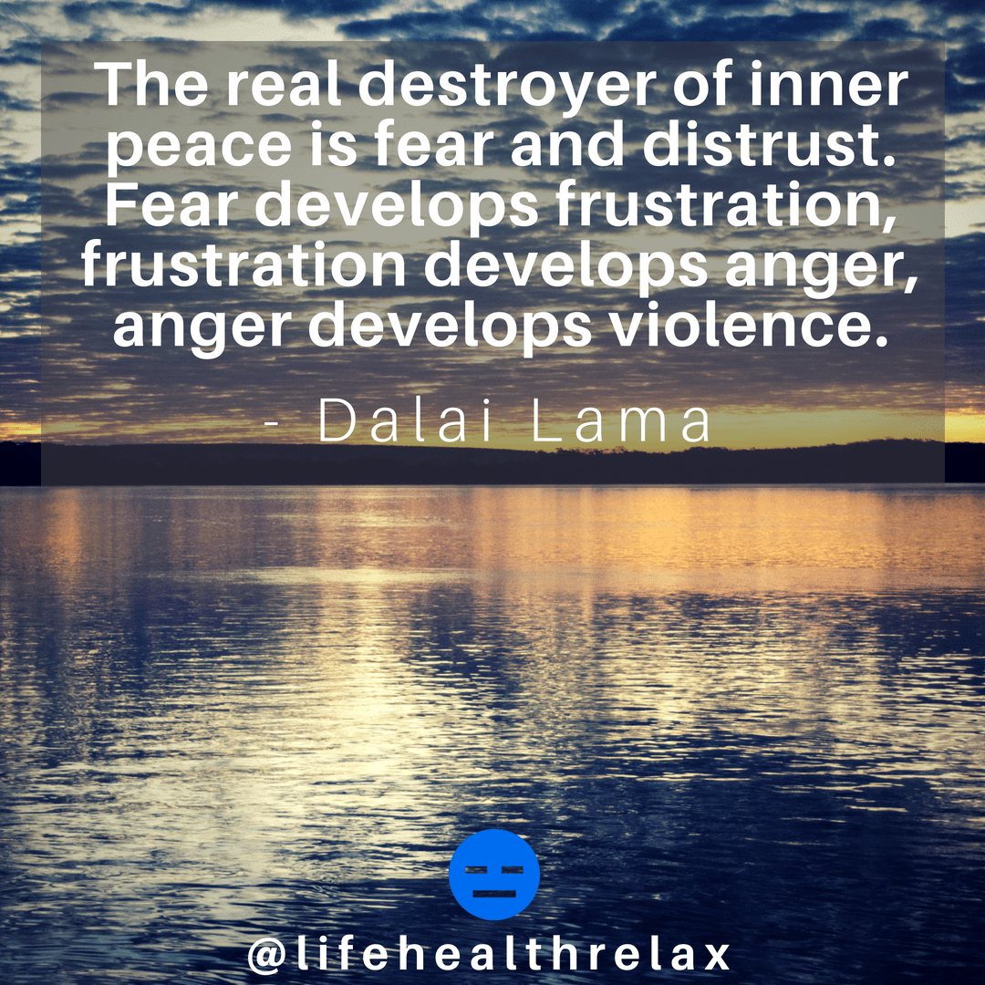 [Image] The real destroyer of inner peace is fear and distrust. Fear develops frustration, frustration develops anger, anger develops violence. – Dalai Lama