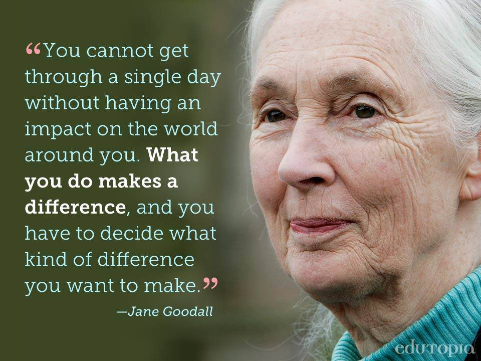 """You cannot get through a single day without having an impact on the world around you. What you do makes a difference, and you have to decide what kind of difference you want to make."" -Jane Goodall [960 x 720]"