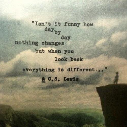 """Isn't it funny how day by day nothing changes, but when you look back everything is different?"" C.S. Lewis [500×500]"