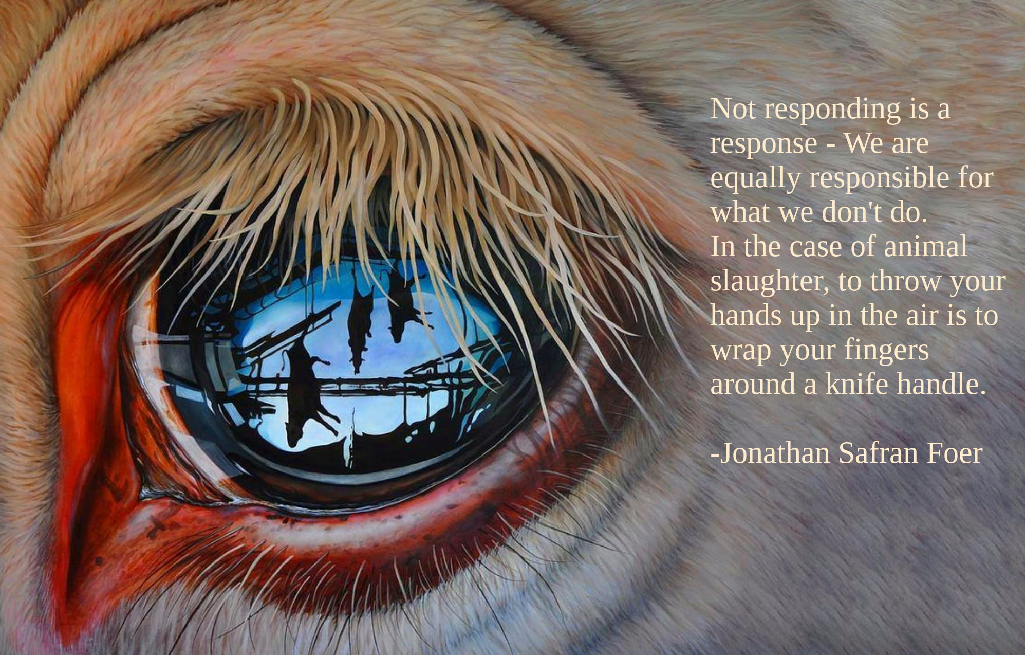 """Not responding is a response — we are equally responsible for what we don't do…"" -Jonathan Safran Foer [1995 x 1274]"