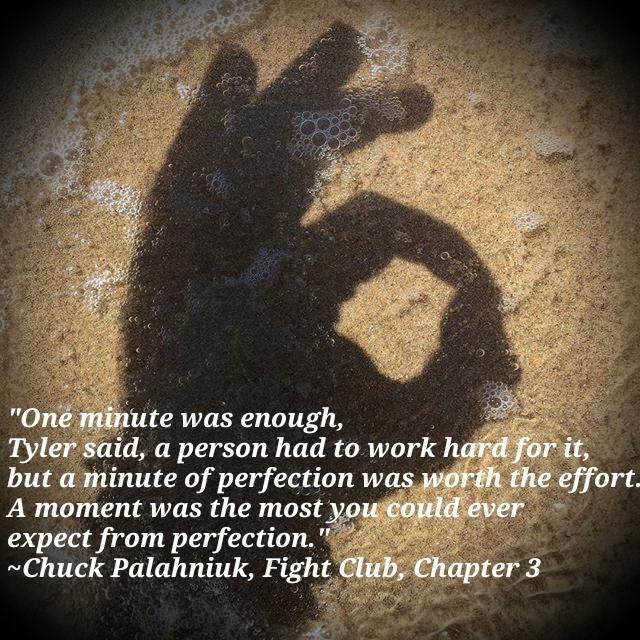 """A moment is the most you could ever expect from perfection."" -Chuck Palahniuk [640×640][OC]"