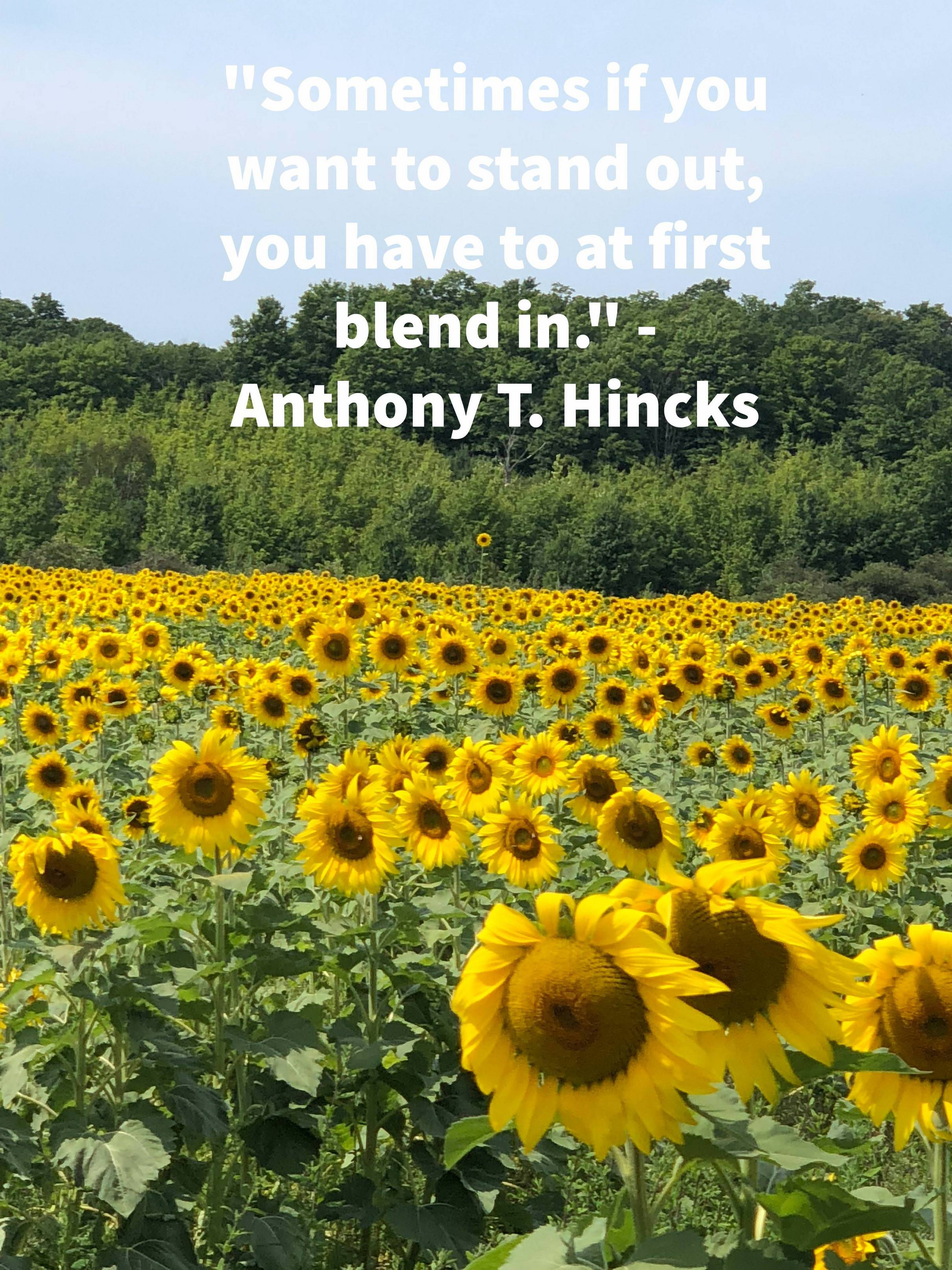 """Sometimes if you want to stand out, you have to at first blend in."" -Anthony T. Hincks [3024 x 4032]"