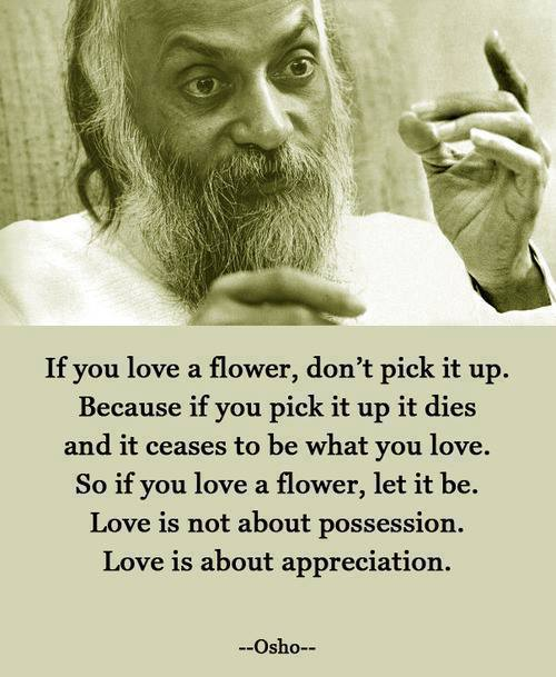 If you love a flower, don't pick it up. Because if you pick it up it dies and it ceases to be what you love. So if you love a flower, let it be. Love is not about possession. Love is about appreciation. --05ho-- https://inspirational.ly