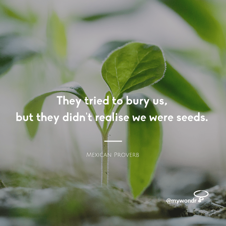 [Image] We were seeds