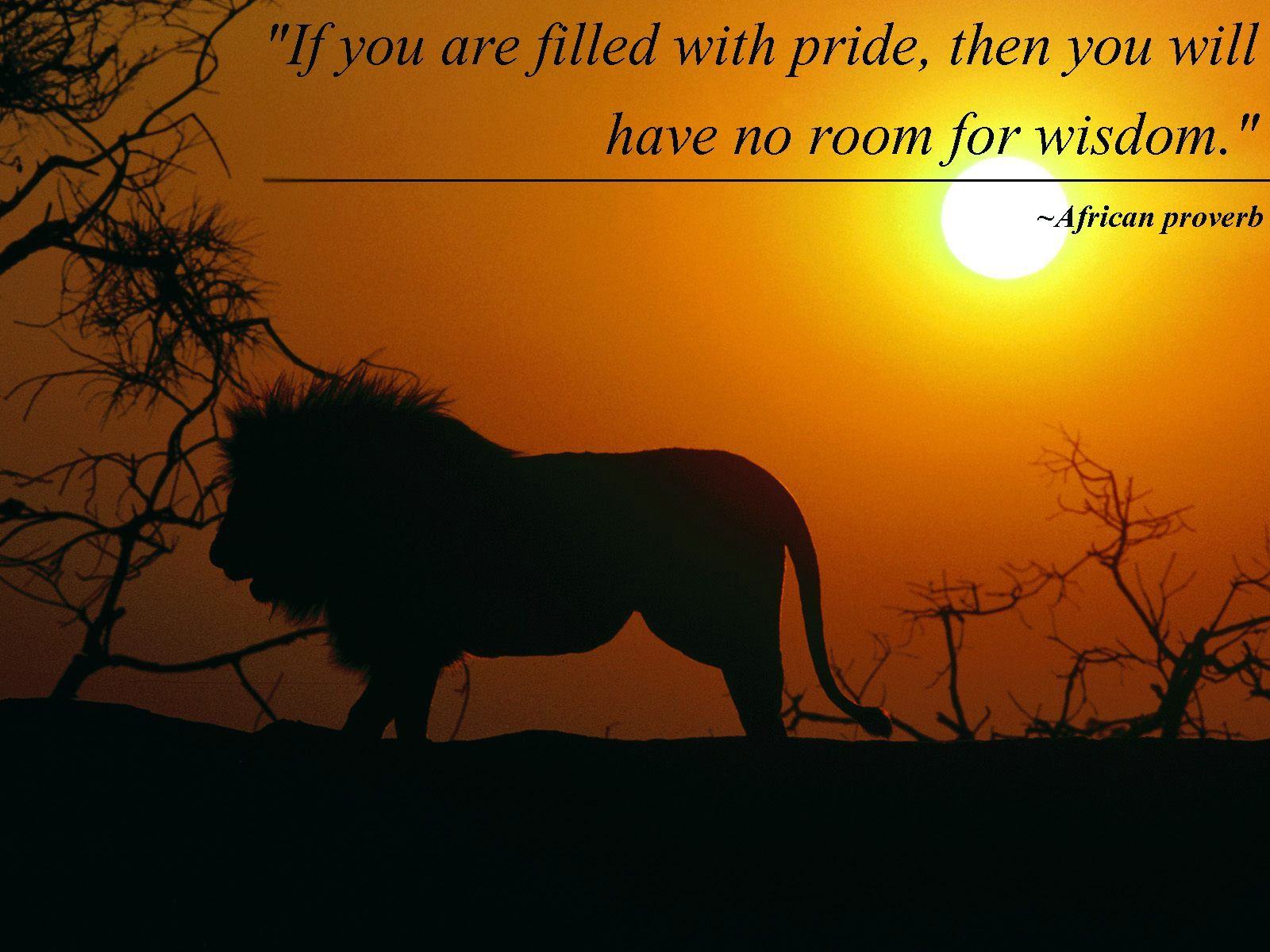 """ If you are filled with pride, then you will have no room for wisdom."" – African Proverb [1600 × 1200]"