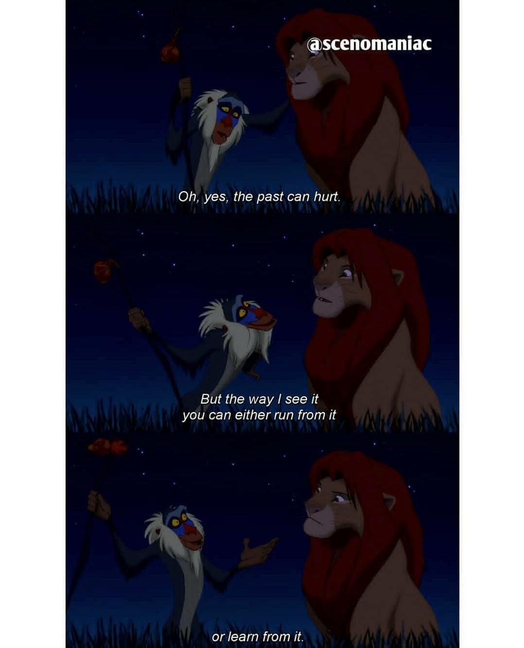 [Image] Rafiki's wisdom.