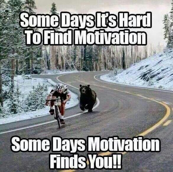 [Image] Motivation will find you