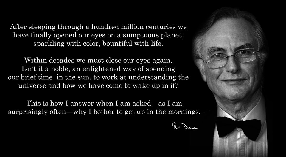 Why I bother to get up in the mornings – Richard Dawkins [960 × 529]