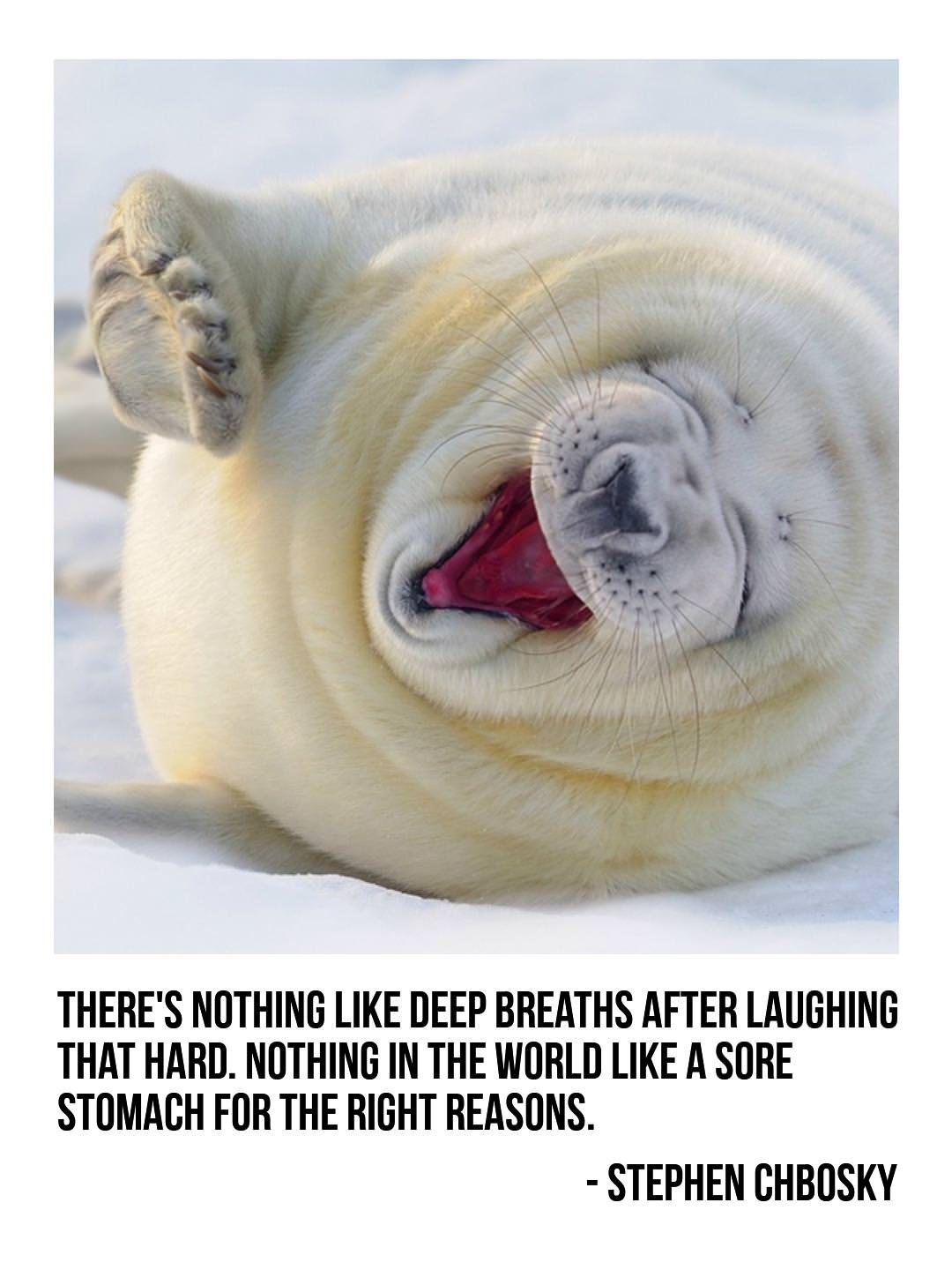 """There's nothing like deep breaths after laughing that hard."" – Stephen Chbosky [1080×1440] [OC]"