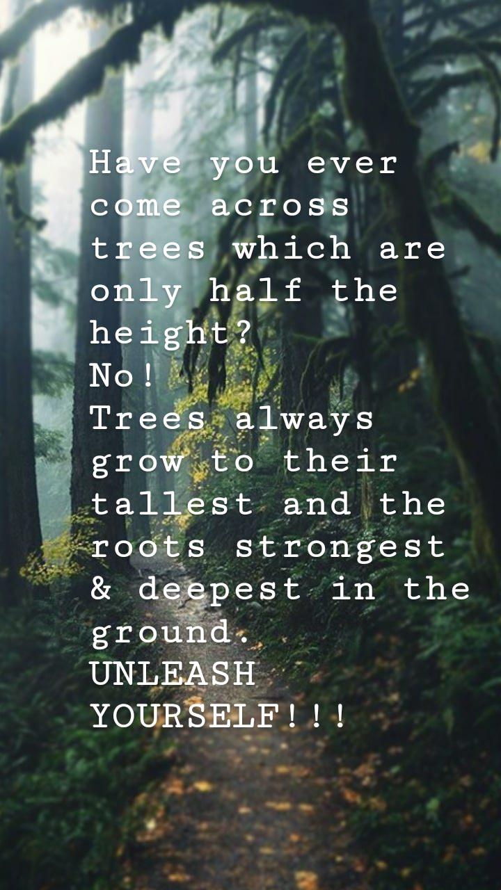 [Image] Unleash Yourself