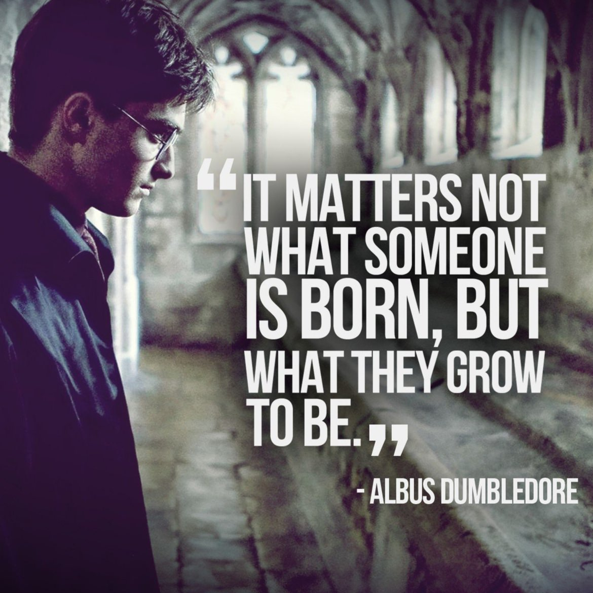 [Image] it matters not what someone is born, but what they grow to be!