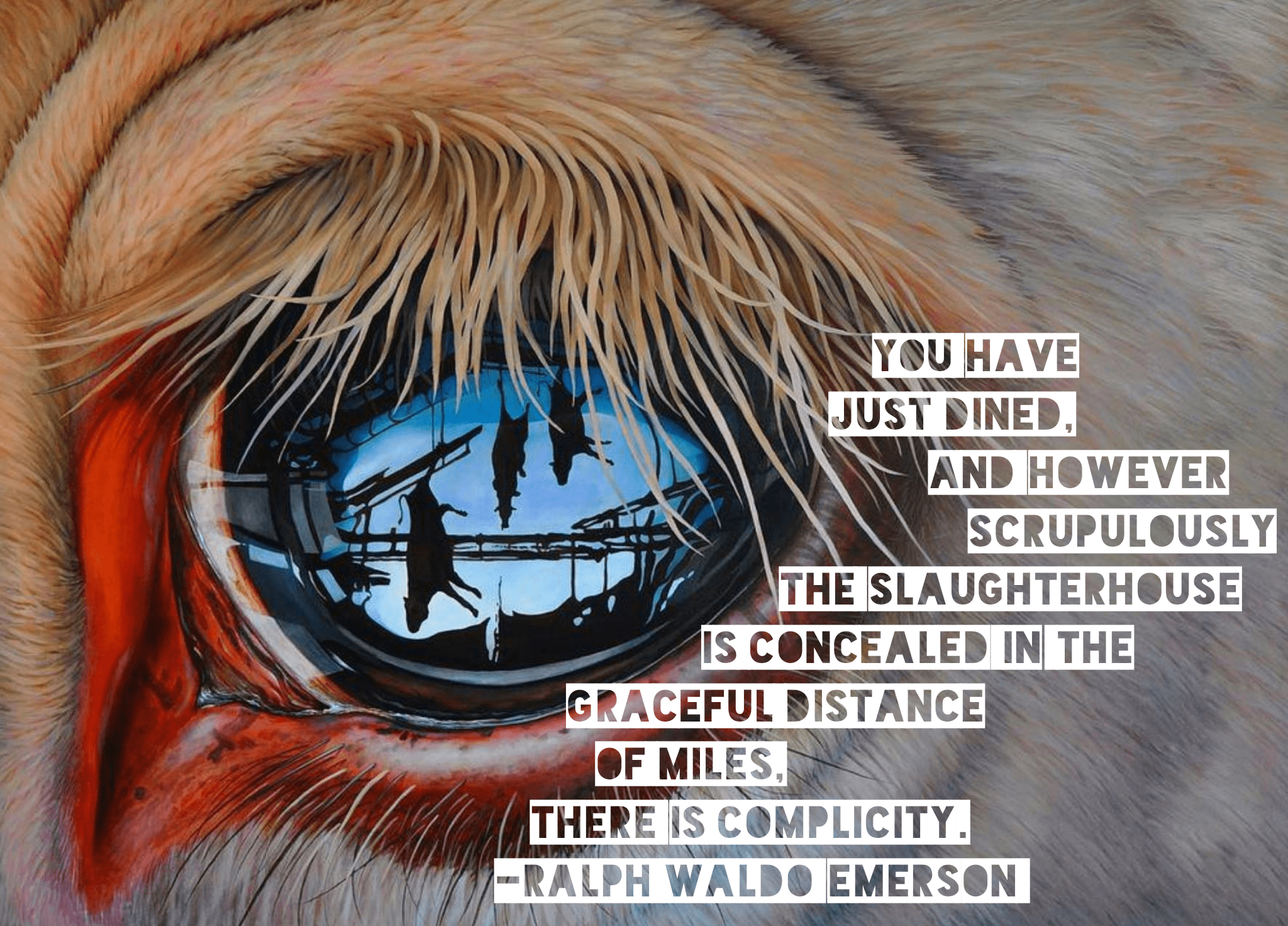 """You have just dined, and however scrupulously the slaughterhouse is concealed in the graceful distance of miles, there is complicity."" -Ralph Waldo Emerson [2048×1472]"