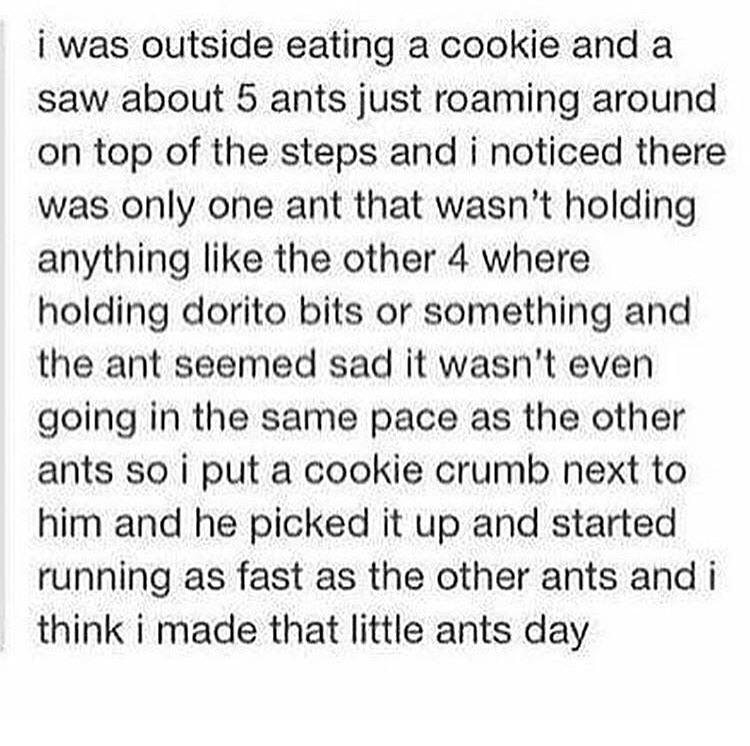 i was outside eating a cookie and a saw about 5 ants just roaming around on top of the steps and i noticed there was only one ant that wasn't holding anything like the other 4 where holding dorito bits or something and the ant seemed sad it wasn't even going in the same pace as the other ants so i put a cookie crumb next to him and he picked it up and started running as fast as the other ants and i think i made that little https://inspirational.ly