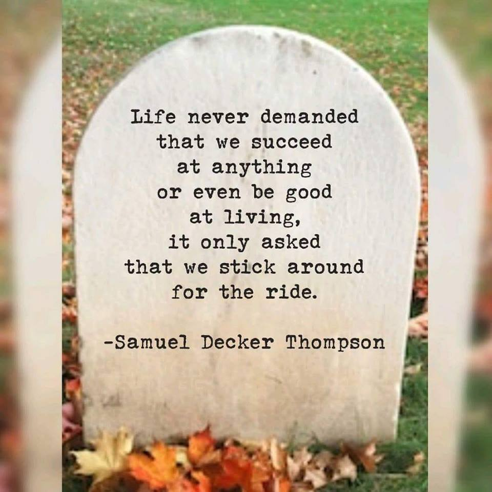 """Life never demanded that we succeed at anything or even be good at living , it only asked that we stick around for the ride ,""-Samuel Decker Thompson [945×755]"