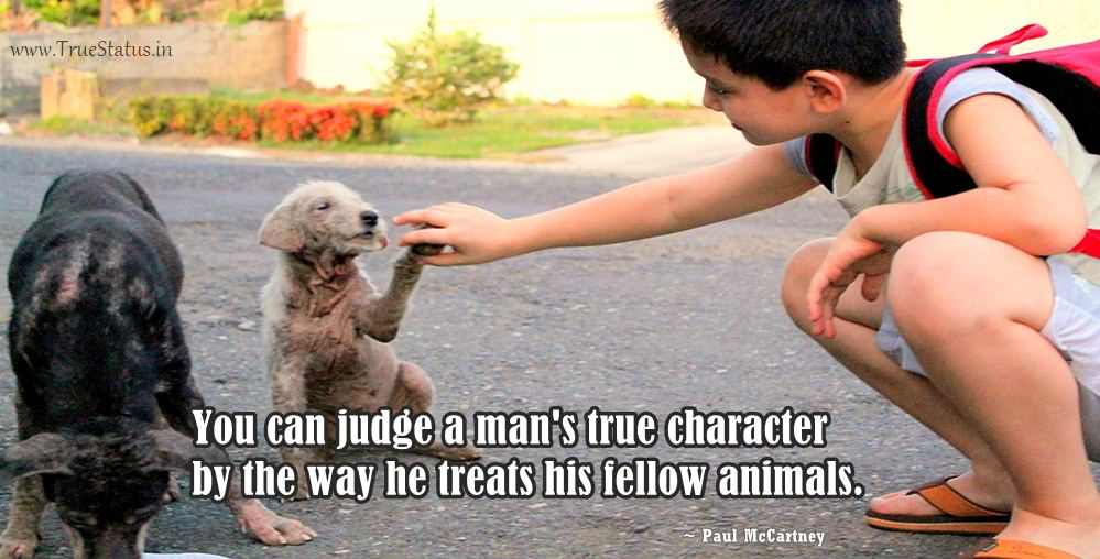 """You can judge a man's true character by the way he treats his fellow animals."" -Paul McCartney [999×508]"