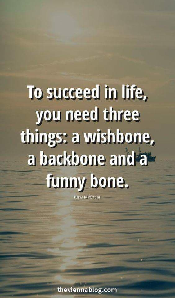To succeed in life, you need three things: a wishbone, a backbone, and a funny bone. – Anon (564×960)