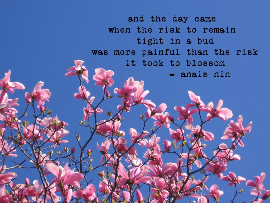 and the day came when the risk to remain tight in a bud was more painful than the risk it took to blossom - https://inspirational.ly