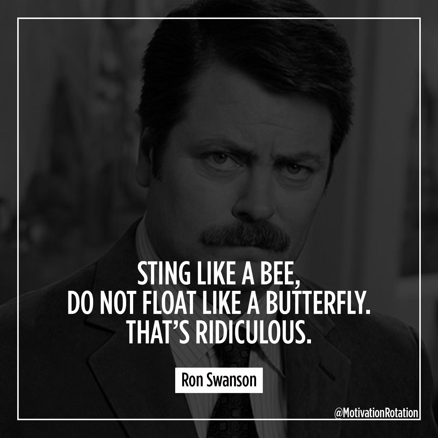 [image] Some motivation from Ron Swanson.
