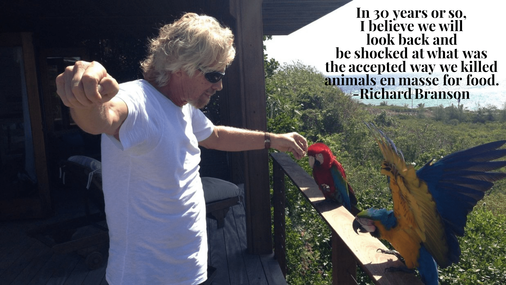 """In 30 years or so, I believe we will look back and be shocked at what was the accepted way we killed animals in masse for food."" -Richard Branson [2048 x 1153]"