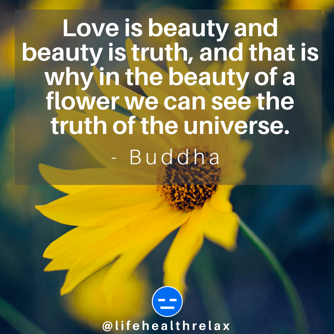 [Image] Love is beauty and beauty is truth, and that is why in the beauty of a flower we can see the truth of the universe. – Buddha