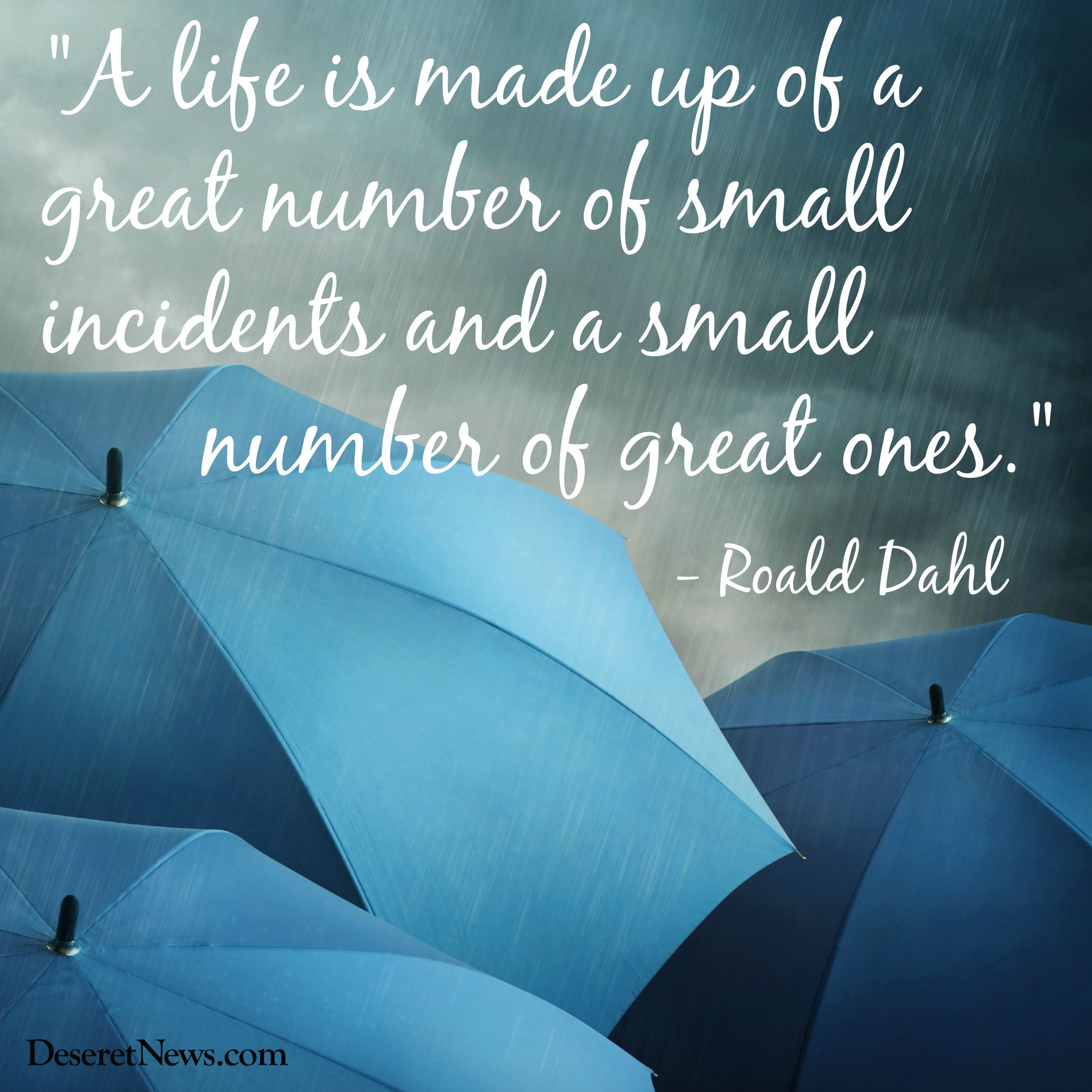 """A life is made up of a great number of small incidents…"" – Roald Dahl [2667 x 2667]"