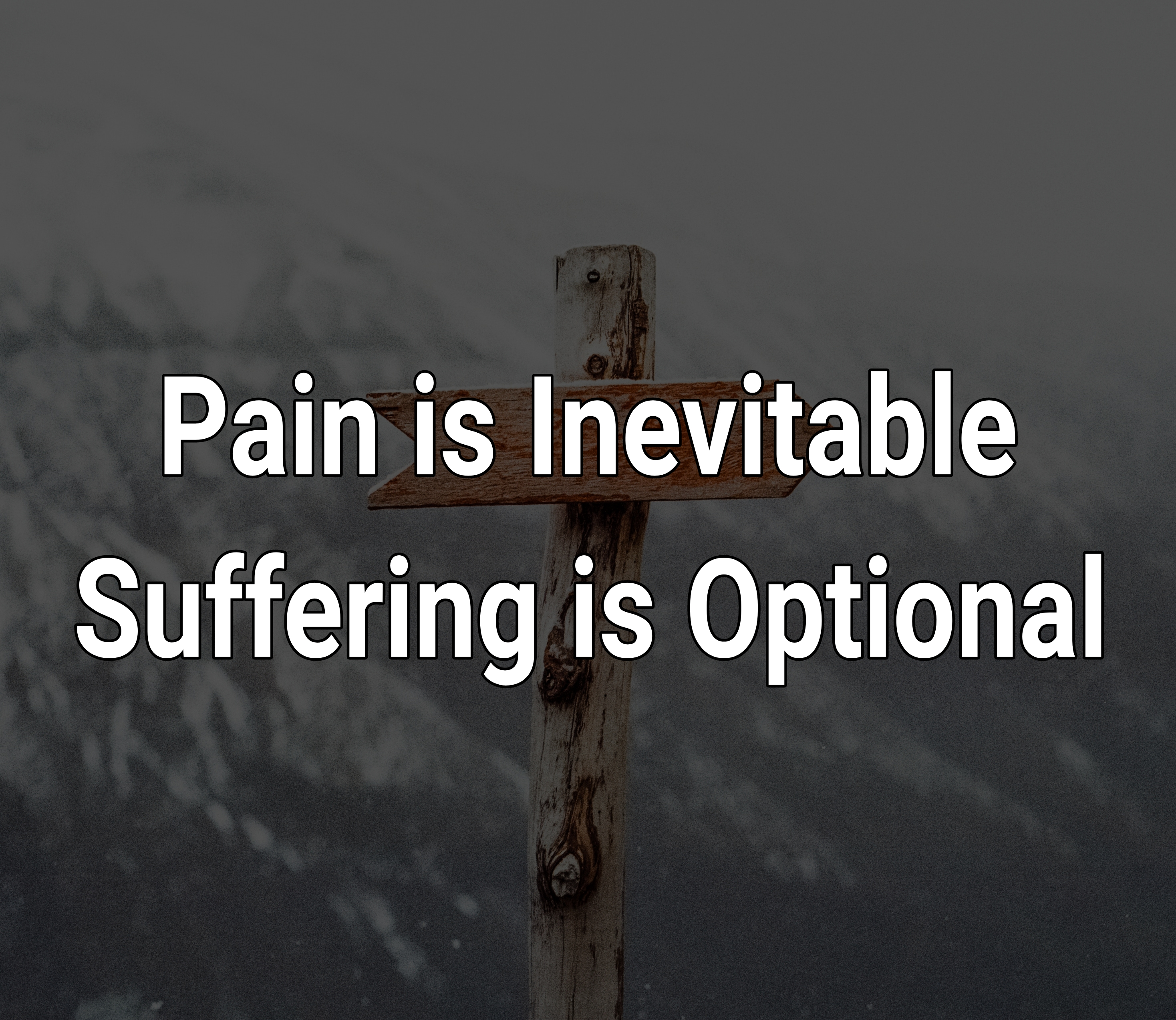 "[IMAGE] ""Pain is Inevitable, Suffering is Optional"" -Buddhist Proverb"