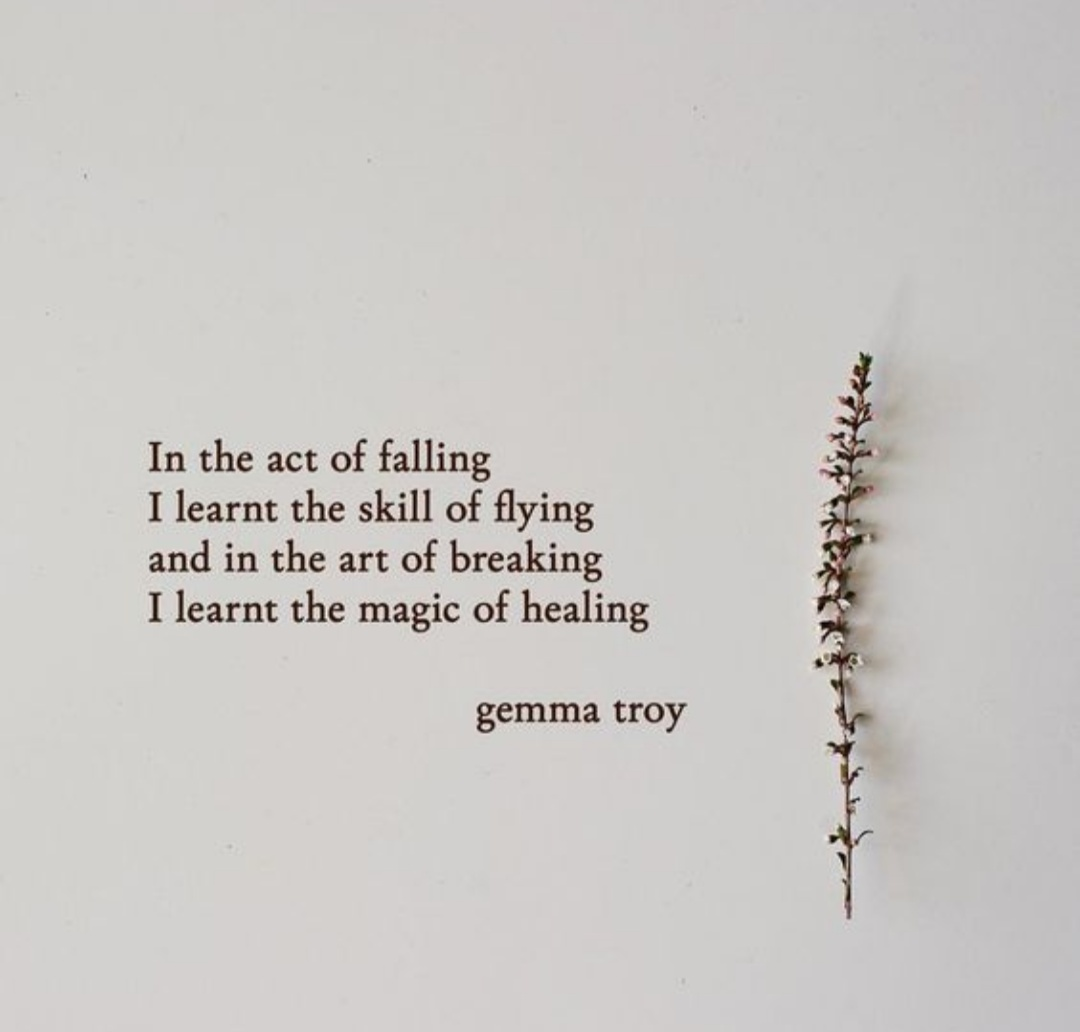In the act of falling I learnt the skill of healing and in the art of breaking I learnt the magic of healing – Gemma Troy [1080 * 1032]