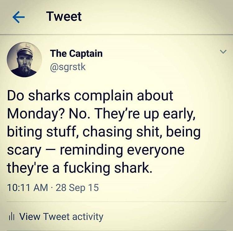 [Image] Be a shark