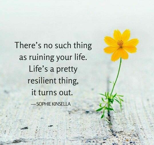 """There's no such thing as ruining your life. Life's a pretty resilient thing, it turns out."" Sophie Kinsella [538 x 506]"