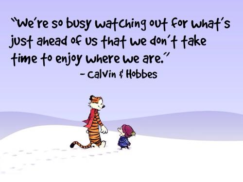 """We're so busy watching out for whats just ahead of us that we don't take time to enjoy where we are."" Calvin Hobbes[500×375]"