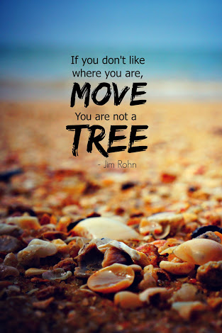 """ If you don't like where you are, move. You are not a tree. "" – Jim Rohn [313× 470]"
