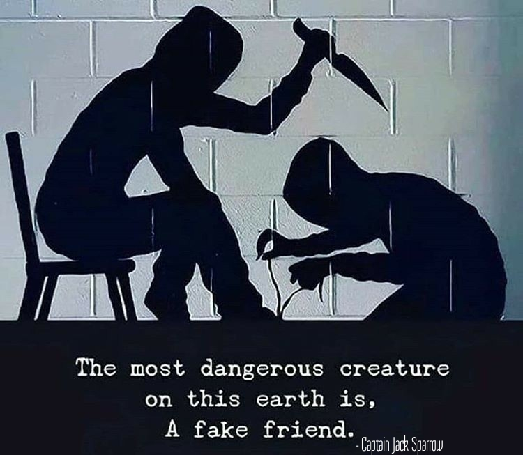 The most dangerous creature on Earth is a fake friend – Captain Jack Sparrow ( 750 × 653)