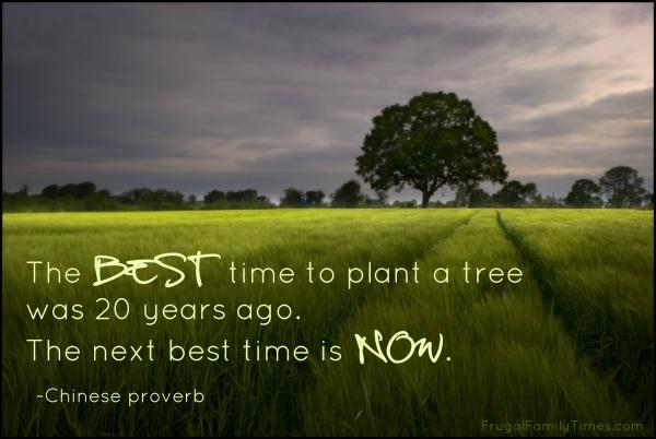 """ ime to plant atr'ee was 20 gears ago. The next best time is ""0""). ~Chinese proverb https://inspirational.ly"