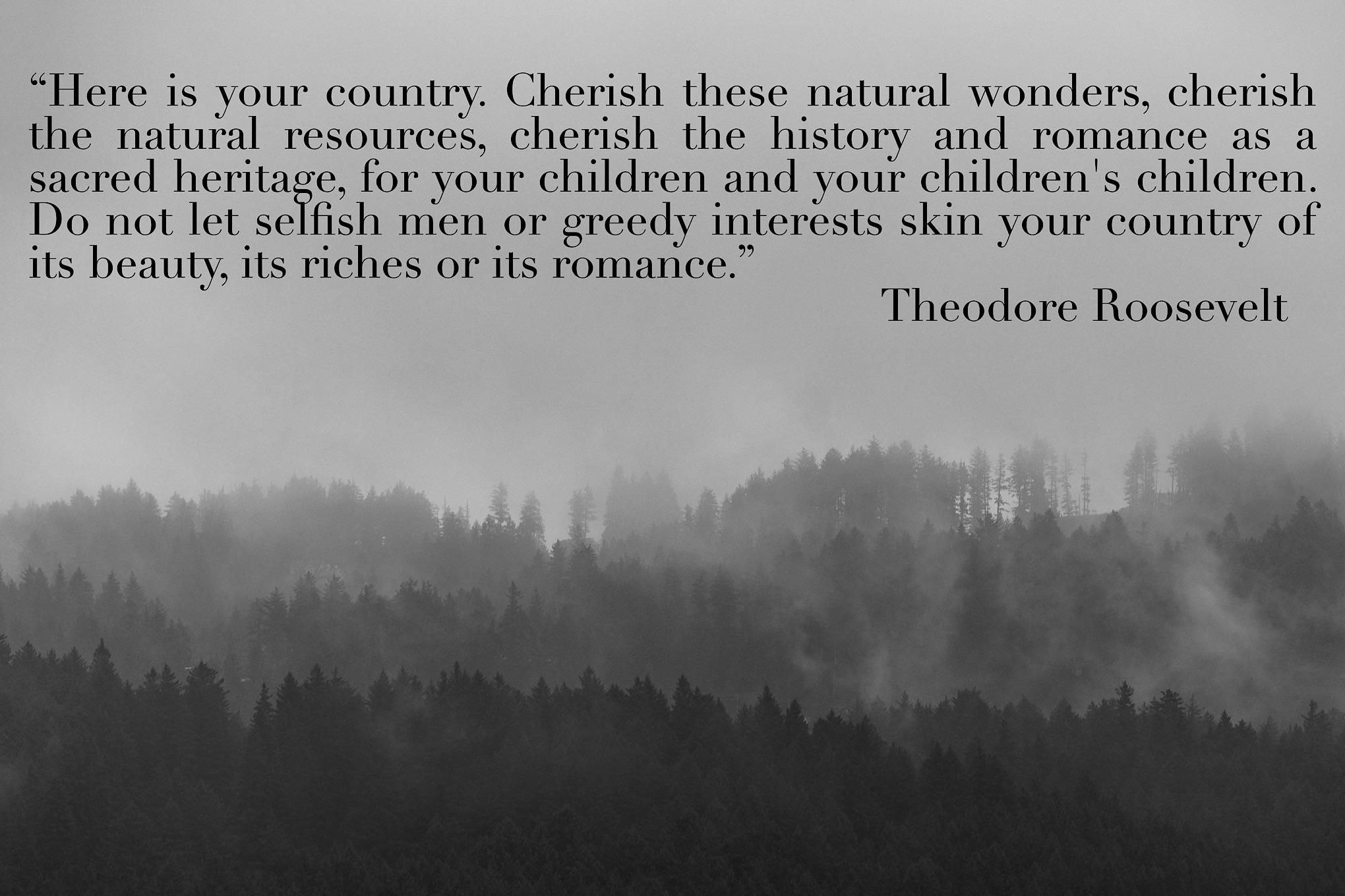 """Here is your country…"" Theodore Roosevelt [OC] [2040×1360]"