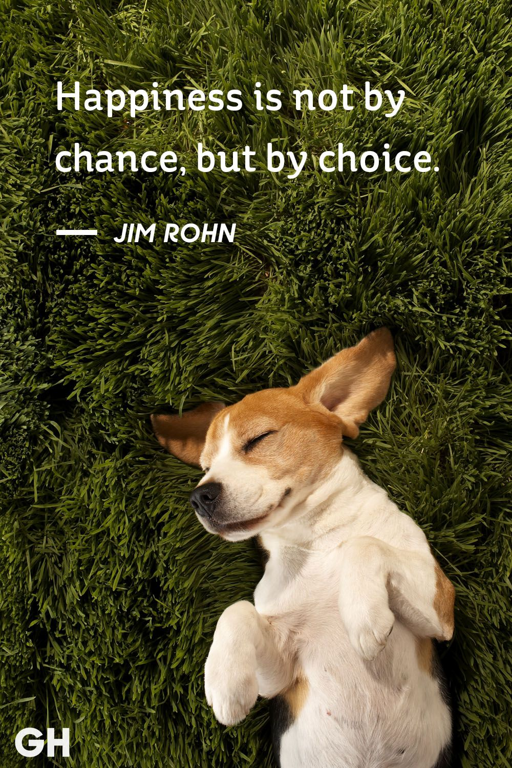""" Happiness is not by chance, but by choice."" – Jim Rohn (1000×1500)"