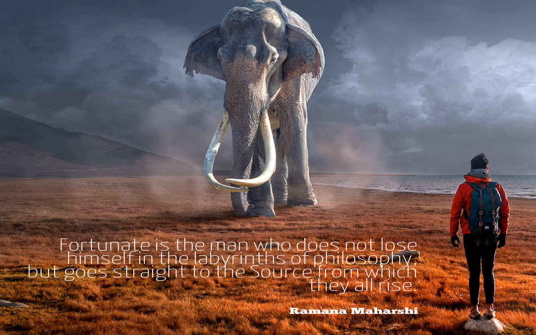 """[725X453]""""Fortunate is the man who does not…"""" -Ramana Maharshi"""