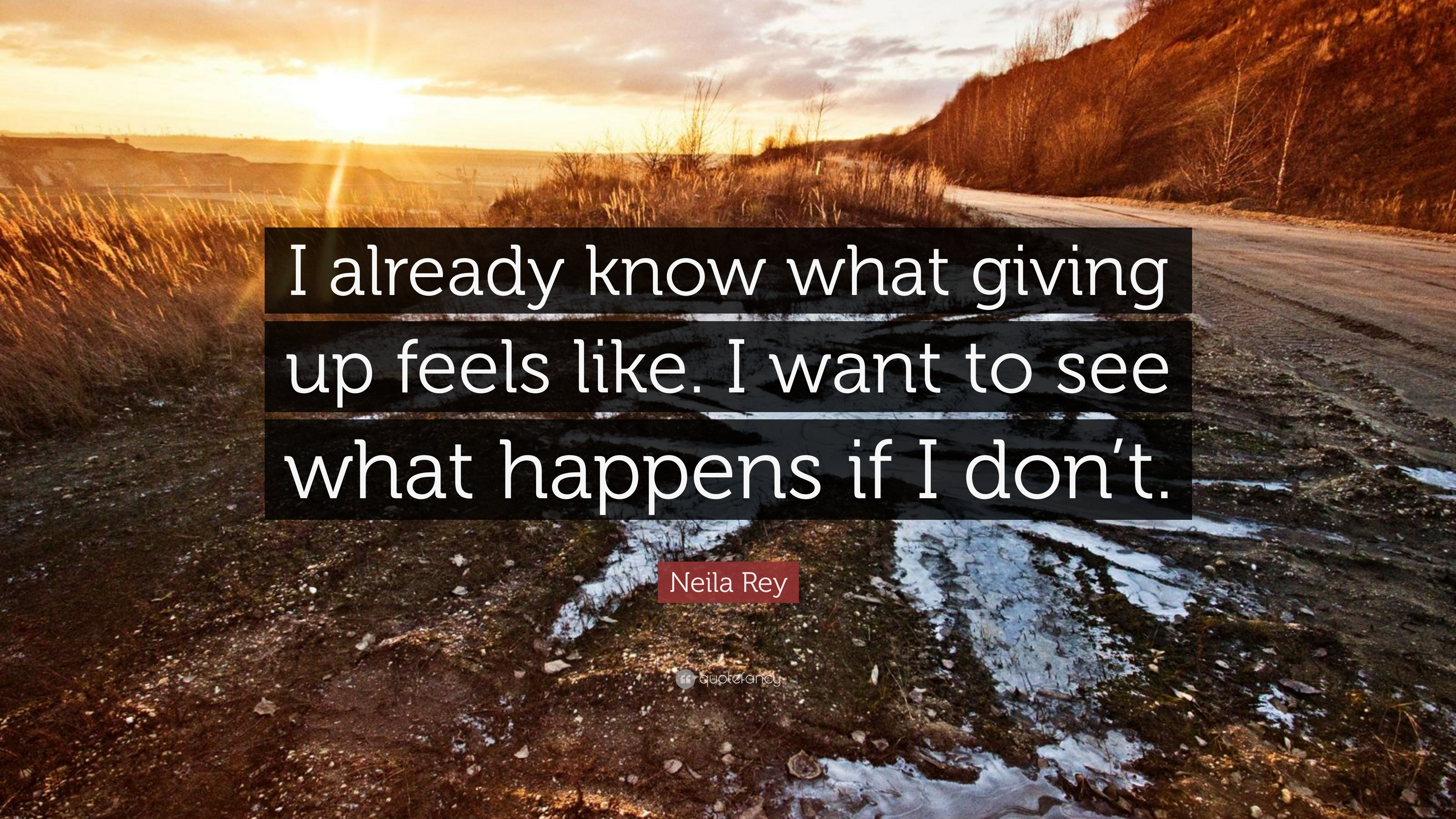 [IMAGE] I want to see what will happen if I do not give up