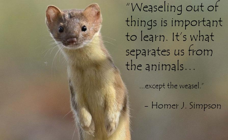 """Weaseling out of things is important to learn. It's what separates us from the animals…except the weasel."" – Homer Simpson [895×550]"