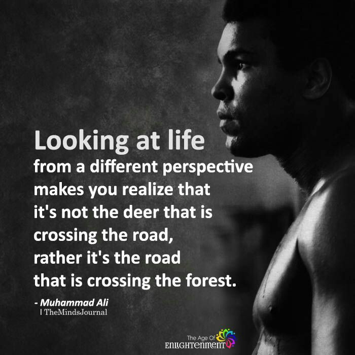 [Image] A Different Perspective…