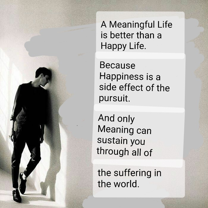 [Image] Happiness is not the Meaning of Life.